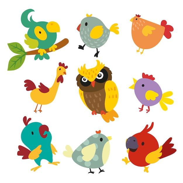 Kolorowe Ptaki Kolekcji Wektor Darmowe Pobieranie