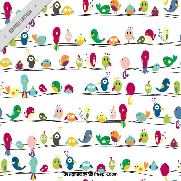 Kolorowe ptaki ładny wzór Darmowych Wektorów