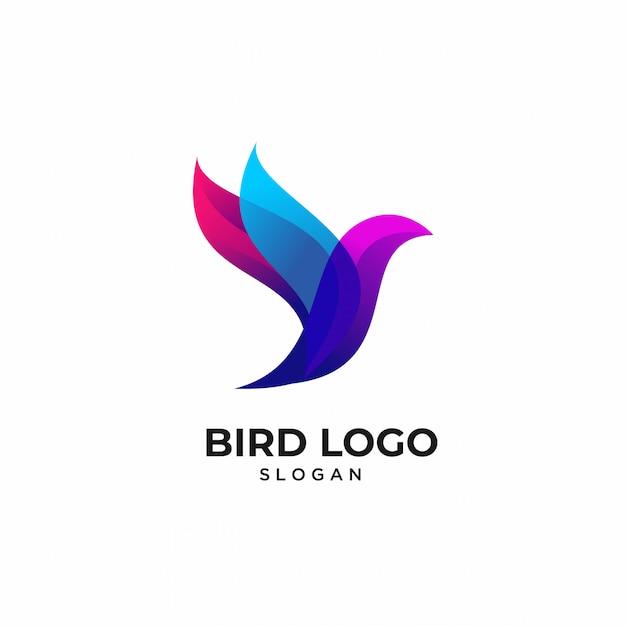 Kolorowe ptaki logo zwierząt szablony Premium Wektorów