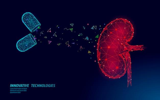 Koncepcja Leczenia Medycyny Ludzkiej Nerek. Leczenie Pomocy Medycznej. Szablon Plakatu Zapobiegania Rakowi Brzucha Układu Moczowego. Pigułka Z Apteki Premium Wektorów