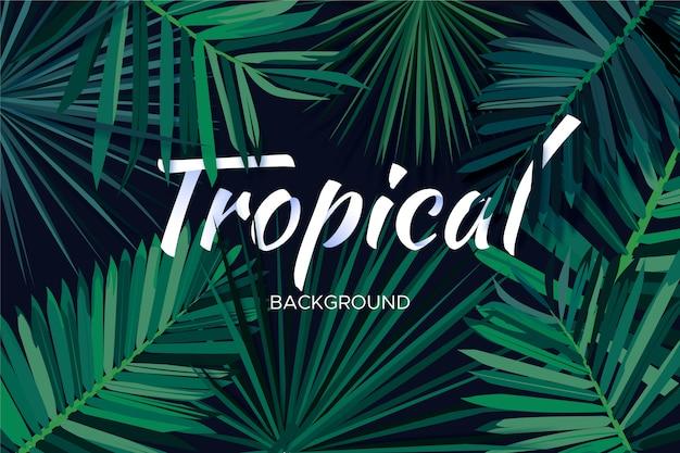 Koncepcja Tropikalny Napis Darmowych Wektorów