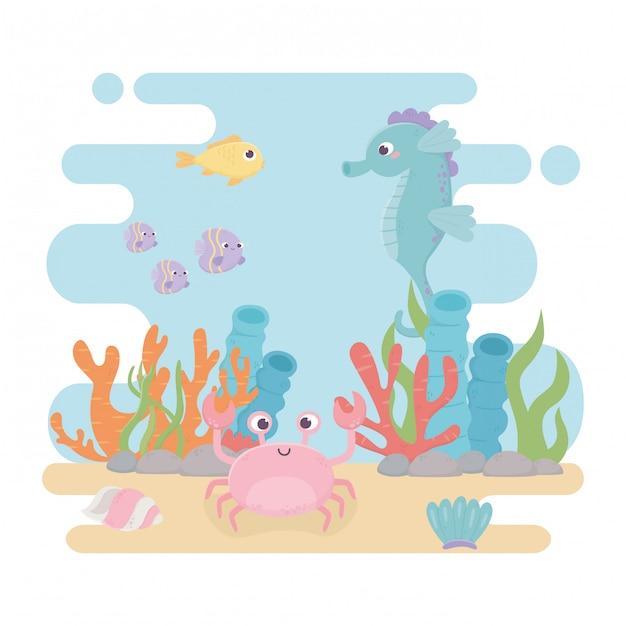 Koniki Morskie Ryby Krab życie Algi Rafa Koralowa Kreskówka Pod Morzem Premium Wektorów