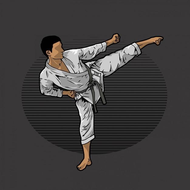 Kopnięcie Karate Premium Wektorów