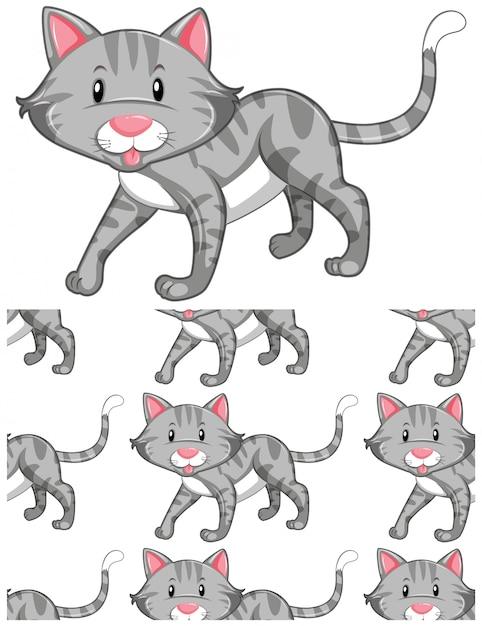 Kot Wzór Na Białym Tle Darmowych Wektorów