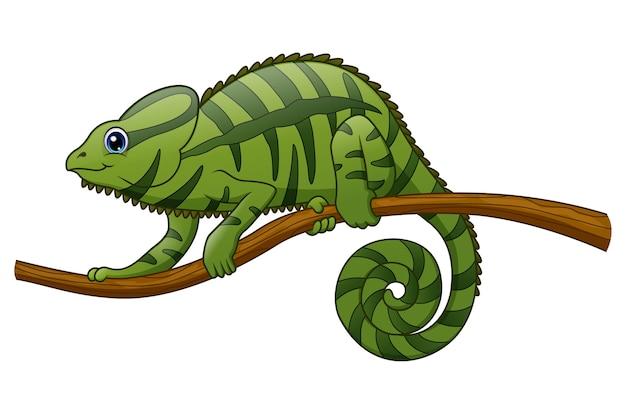 Kreskówka maskotka kameleona Premium Wektorów