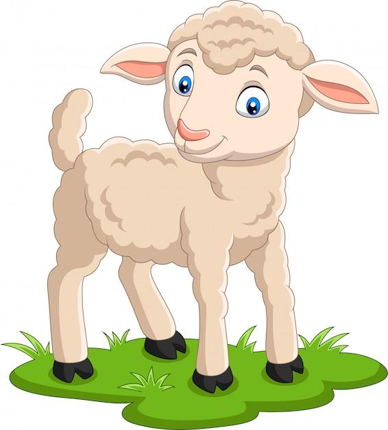 Kreskówka szczęśliwy baranek na trawie Premium Wektorów