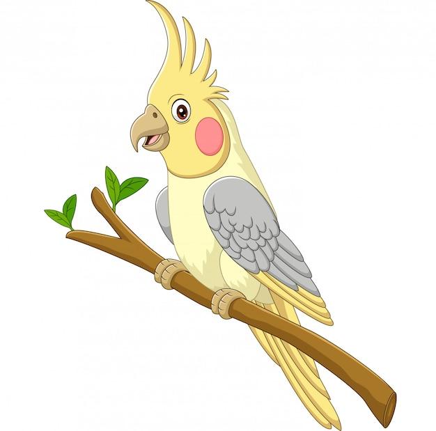 Kreskówka żółte Nimfy Siedzi Na Gałęzi Drzewa Premium Wektorów