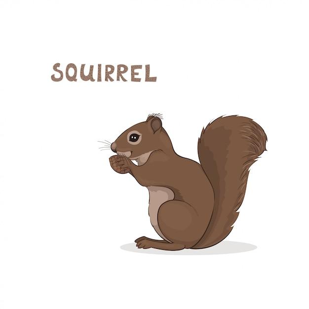 Kreskówki śliczna Wiewiórka, Odizolowywająca. Alfabet Zwierząt. Premium Wektorów