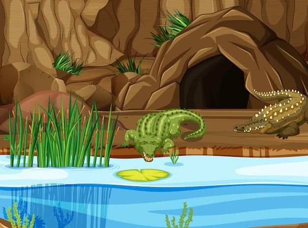 Krokodyl na bagnach Premium Wektorów