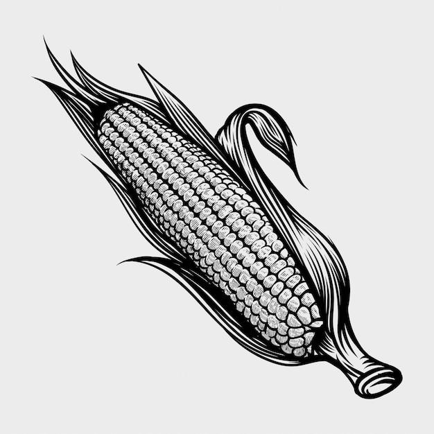Kukurydzana Ręka Rysuje Rocznika Rytownictwa Ilustrację Premium Wektorów