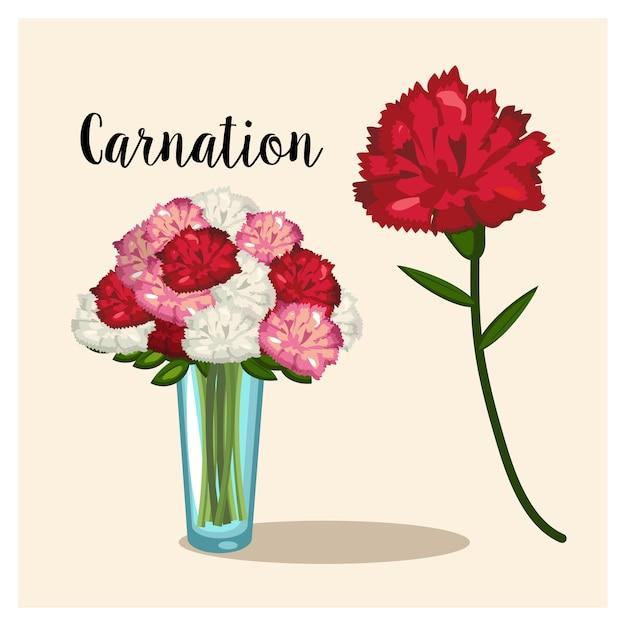Kwiat Goździka. Wazon Z Kwiatami Goździków. Wektor Premium Wektorów