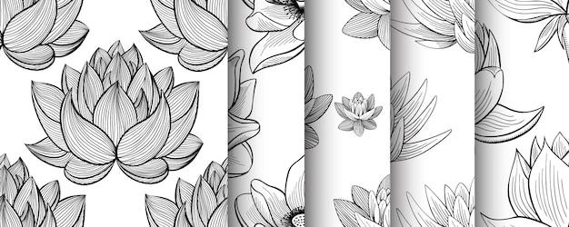 Kwiat Lotosu Lilia Woda Wzór Zestaw W Stylu Vintage Premium Wektorów