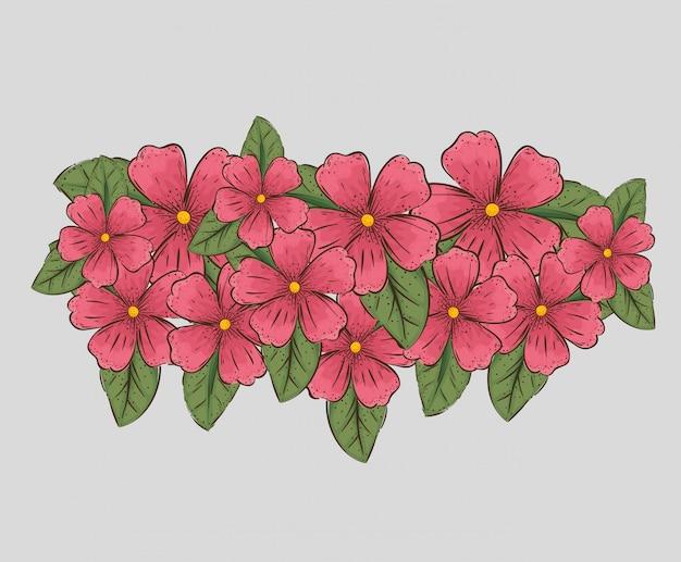 Kwiaty rośliny z liśćmi natury i płatkami Darmowych Wektorów