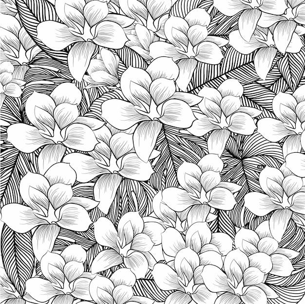 Kwiaty rysuje z sztuką na białym tle Premium Wektorów