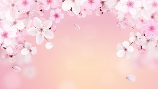 Kwitnąca jasnoróżowa sakura Premium Wektorów