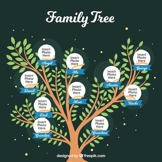 Ładny Szablon Drzewo Genealogiczne Darmowych Wektorów