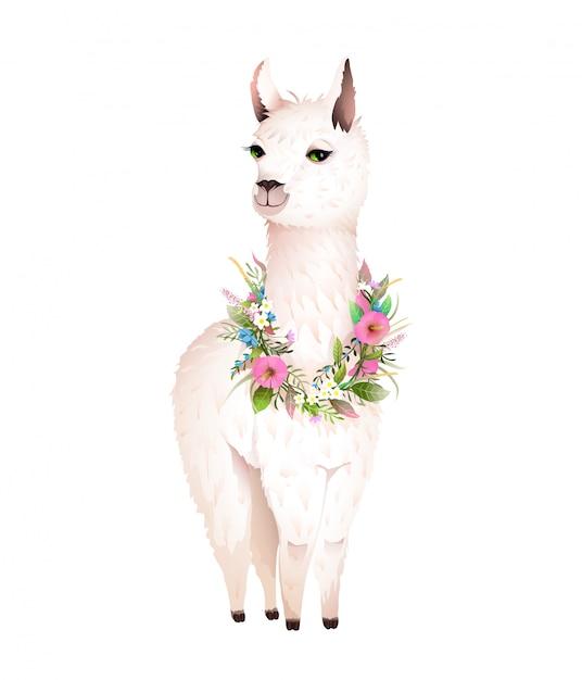 Lama Animal Design Z Kwiatami Laurowymi Premium Wektorów