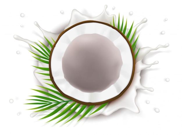 Łamany Kokos W Plusku Mleka Darmowych Wektorów