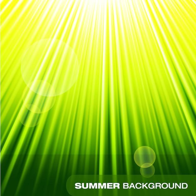 Lato Sunburst Zielone Tło Premium Wektorów