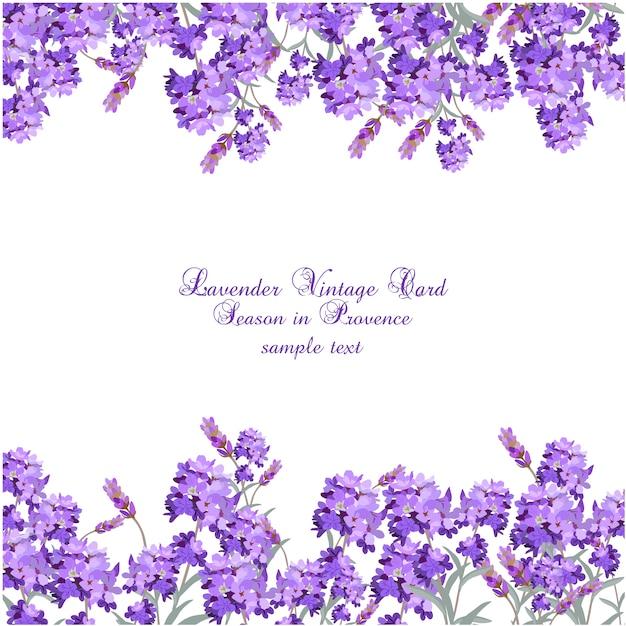 Lavender Vintage Karty Darmowych Wektorów