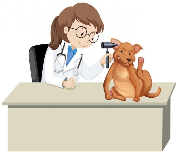 Lekarz Weterynarii Z Chorym Zwierzęciem Darmowych Wektorów