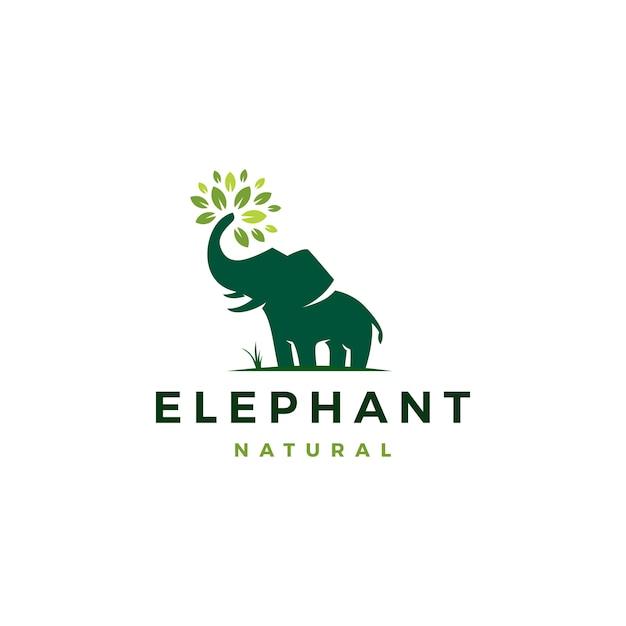 Liść słonia pozostawia logo drzewa Premium Wektorów
