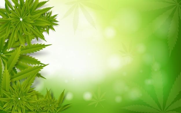 Liści Marihuany Zielonego Narkotyku Marihuany Tło Premium Wektorów