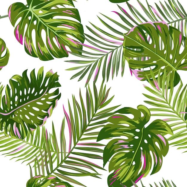 Liście Palmowe Tropikalny Wzór Premium Wektorów