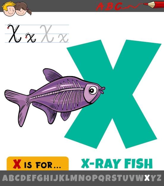 Litera X Z Alfabetu Z Rybą Rentgenowską Kreskówki Premium Wektorów