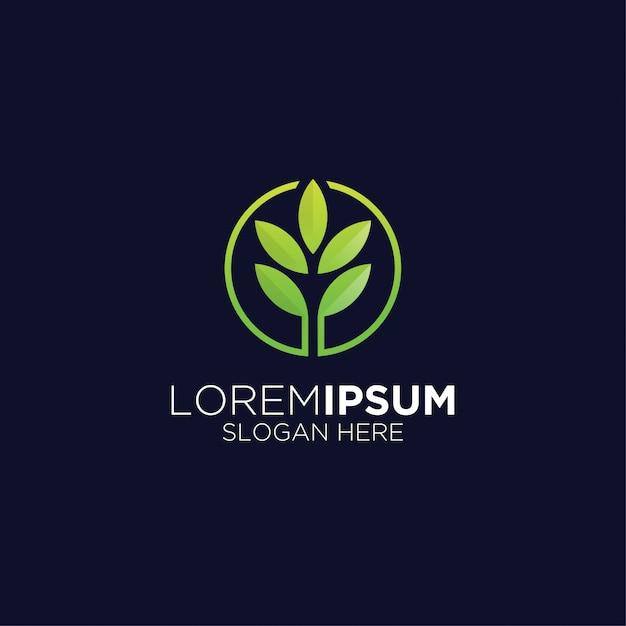 Logo Kreatywnych Liści Rolnictwo Nowoczesne Premium Wektorów