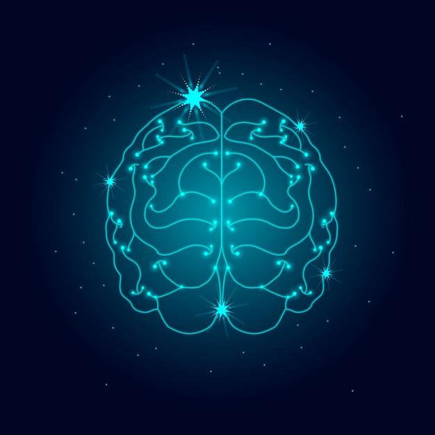 Ludzki układ nerwowy Darmowych Wektorów