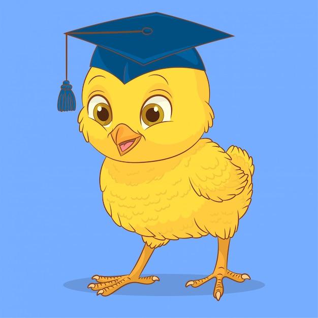 Mały kurczak z czapką Premium Wektorów