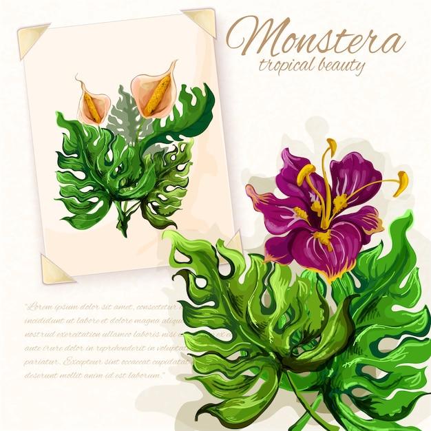 Monstera Wychodzi Z Kwiatami Hibiskusa Darmowych Wektorów