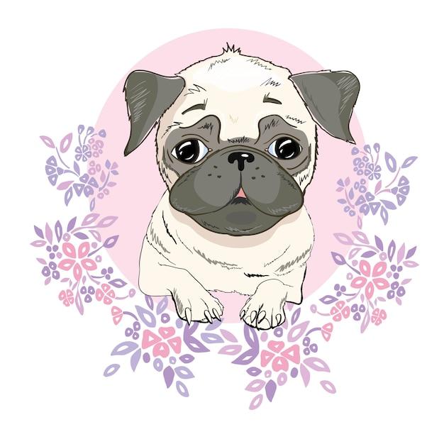 Mops Pies Twarz - Ilustracja Wektorowa Na Białym Tle Premium Wektorów