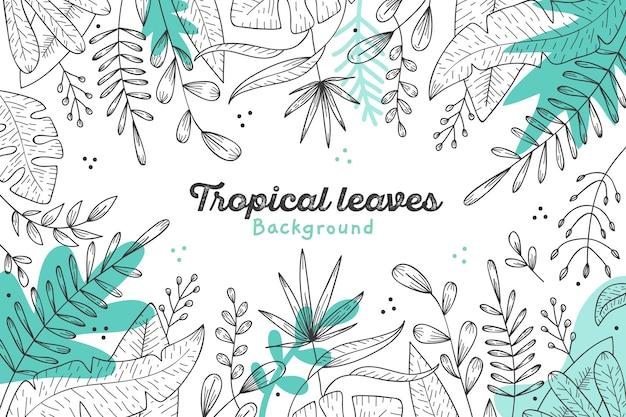 Motyw Tła Tropikalnych Liści Darmowych Wektorów