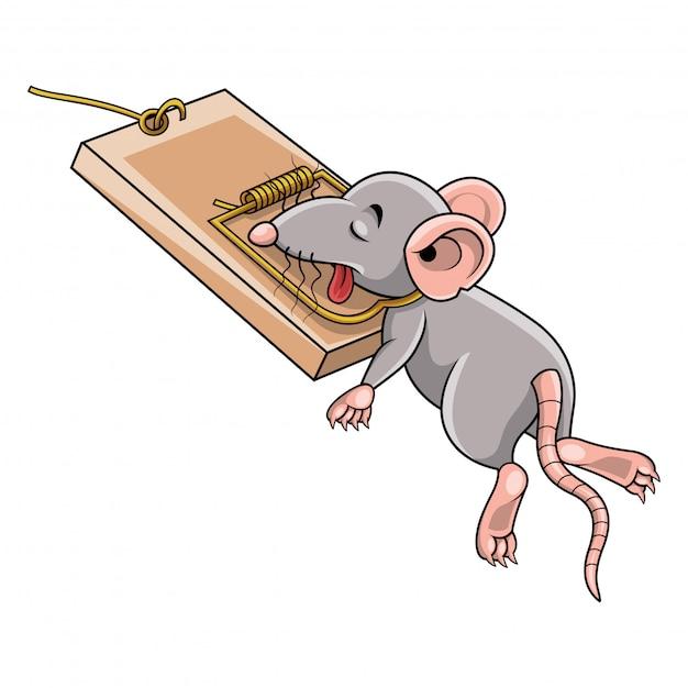 Mysz Kreskówki Martwa W Pułapkę Na Myszy Premium Wektorów