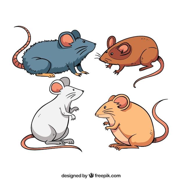 Myszy Tworzą Kolekcję Czterech Darmowych Wektorów