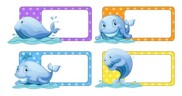 Naklejki z polka dot z ilustracji wielorybów Darmowych Wektorów