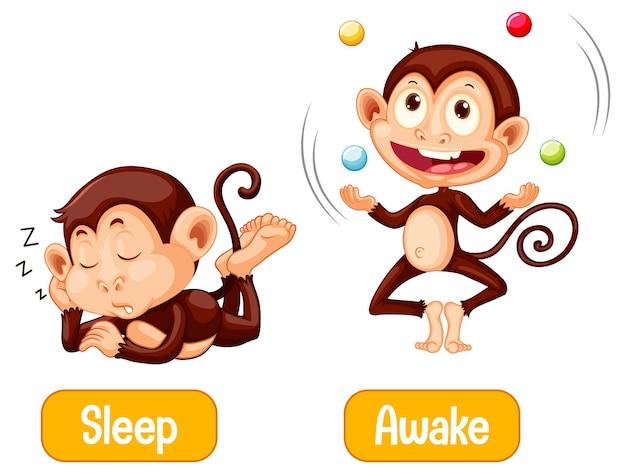 Naprzeciwko Słów Ze Snem I Przebudzeniem Darmowych Wektorów