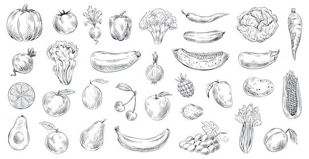 Naszkicowane Warzywa I Owoce. Ręcznie Rysowane żywności Ekologicznej, Grawerowanie Warzyw I Owoców Szkic Ilustracji Zestaw Premium Wektorów