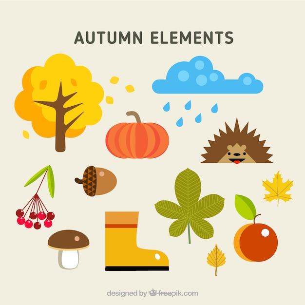 Naturalne Elementy Jesiennych Darmowych Wektorów