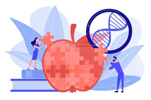 Naukowcy Robią Puzzle Z Jabłkami. Organizm Zmodyfikowany Genetycznie I Organizm Zmodyfikowany, Koncepcja Inżynierii Molekularnej Na Białym Tle. Różowawy Koralowy Bluevector Ilustracja Na Białym Tle Darmowych Wektorów