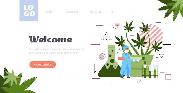 Naukowiec W Mundurze Analizując Ekstrakt Oleju Konopnego Cbd Z Naukowca Roślina Marihuany Pracujący W Laboratorium Opieki Zdrowotnej Apteka Koncepcja Marihuany Pełnej Długości Kopia Przestrzeń Premium Wektorów