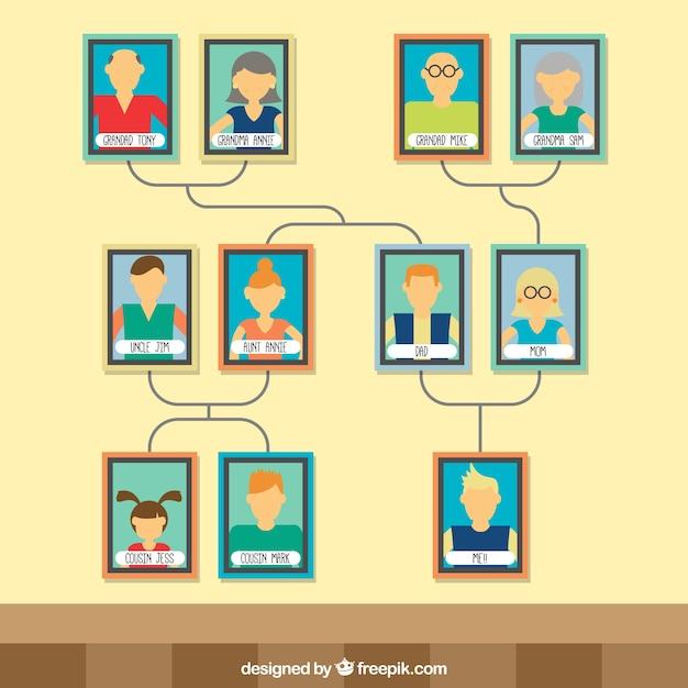 Nowoczesne Drzewo Genealogiczne Z Kolorowymi Ramkami Darmowych Wektorów