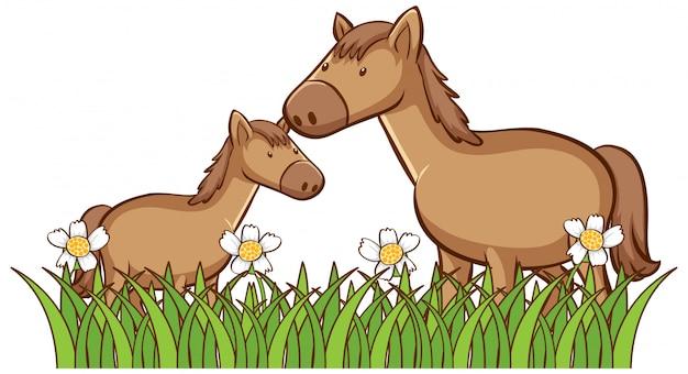 Odosobniony Obrazek Dwa Konia Darmowych Wektorów