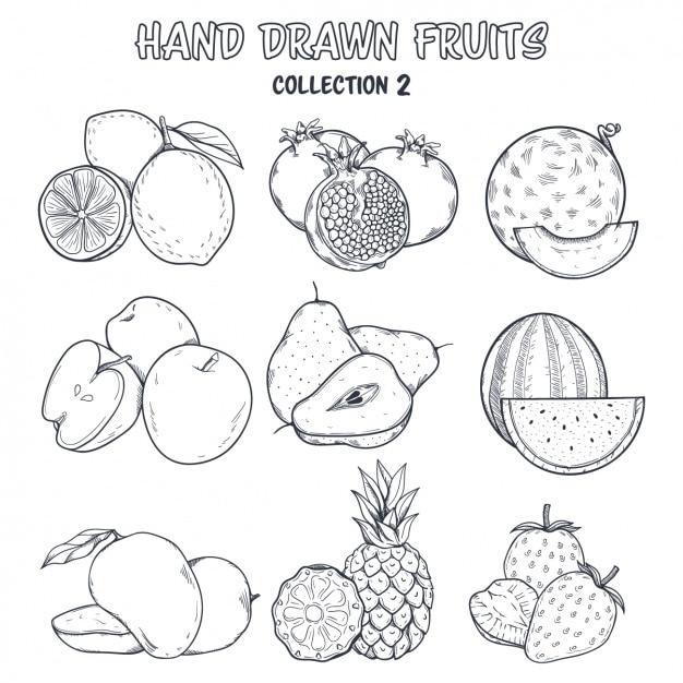 Owoce farbowanie projektowe Darmowych Wektorów