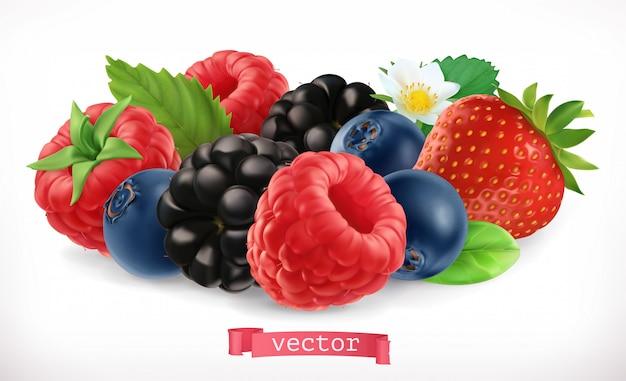 Owoce I Jagody Leśne. Malina, Truskawka, Jeżyna, Jagoda. 3d Realistyczna Ikona Premium Wektorów