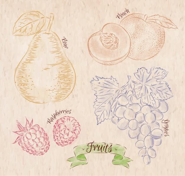 Owoce Malowane W Różnych Kolorach W Wiejskim Stylu Gruszka, Brzoskwinia, Malina, Winogrona Premium Wektorów