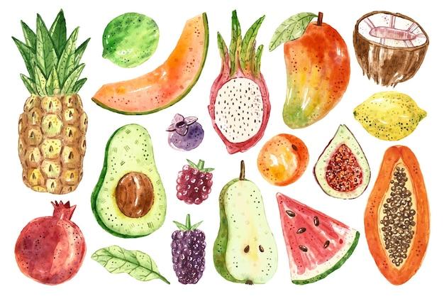 Owoce Tropikalne Clipart. Papaja, Kokos, Jeżyna, Malina, Ananas, Awokado, Melon, Owoc Smoka, Arbuz, Morela, Figi, Cytryna, Limonka, Borówka, Gruszka, Granat. Premium Wektorów