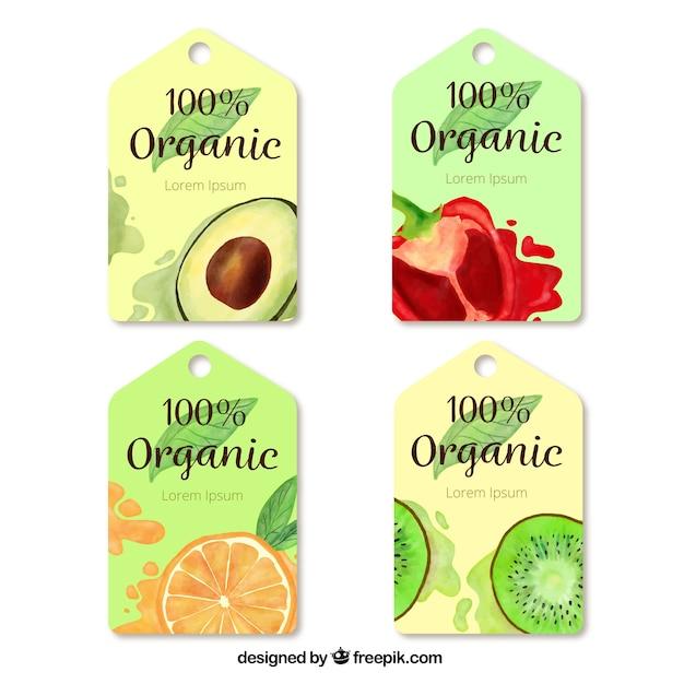 Pakiet czterech znaczników akwareli z żywnością ekologiczną Darmowych Wektorów